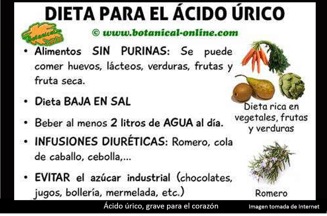 Dieta hipercolesterolemia hipertension y acido urico dieta para pacientes con gota como - Alimentos prohibidos con acido urico ...