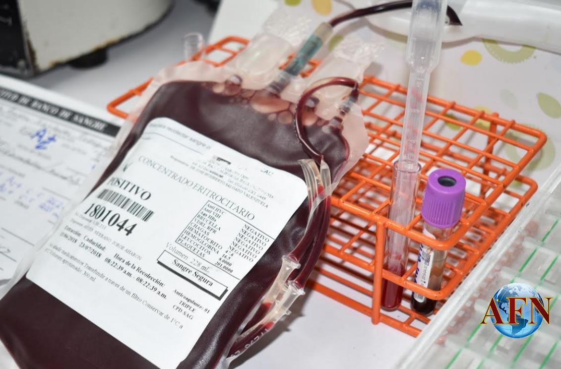 Fomentan donación de sangre segura