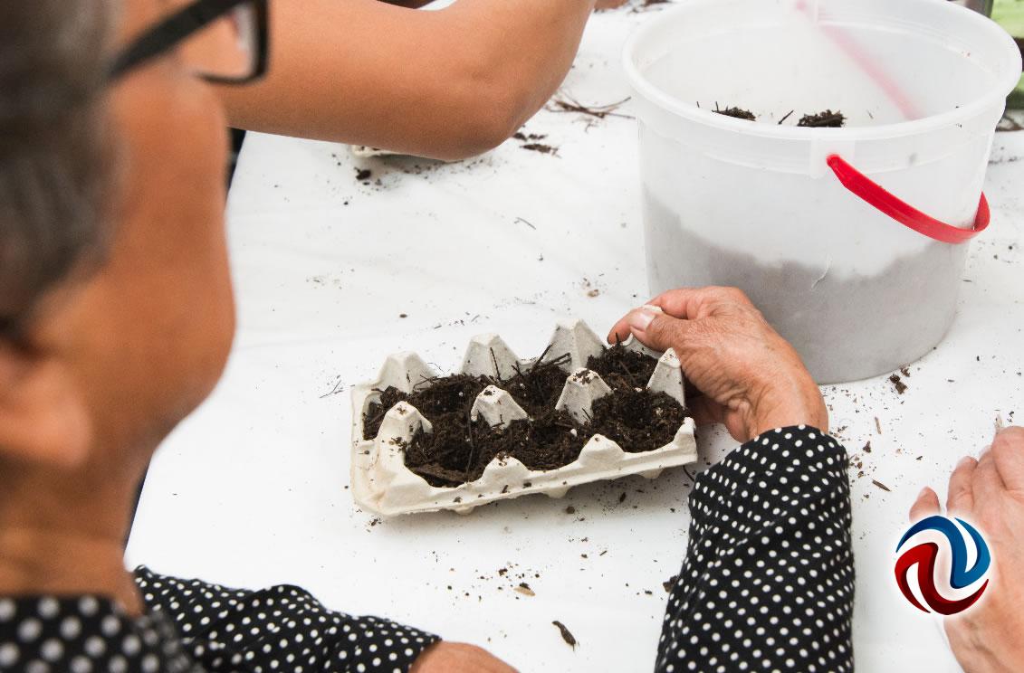 Enseñan técnicas para cultivar en casa