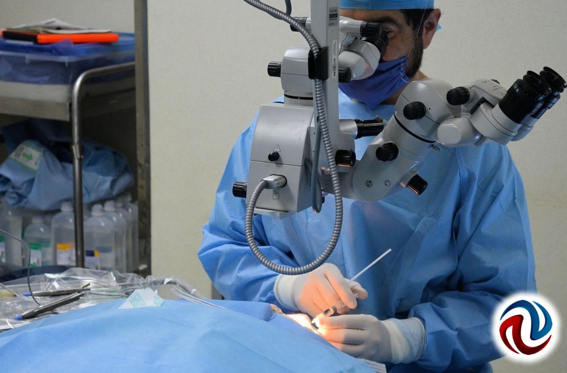 Cuenta IMSS 77 unidades de donación y trasplante de órganos